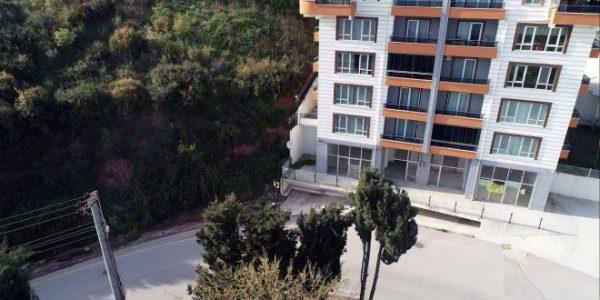 'Manzara için ağaçlar kesildi' iddiası